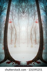 Mystic fantasy forest during a winter foggy day