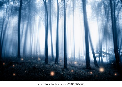 Mystic fantasy forest with fireflies