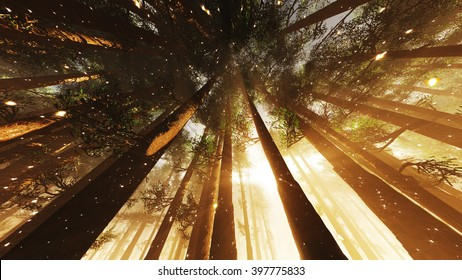 Mystic Fantasy Woods with Lightrays and Fireflies Low Wide Angle 3D Illustration