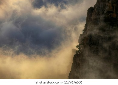 Mystic fog in the mountains of Demerdzhi. Clouds in the evening sky and fog in the mountains, where the pine at the cliff
