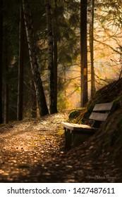 Mystic hiking Trail on river dam Pöhl, located in Vogtland near the town Plauen.