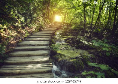 Mystic journey ahead. a quiet lane on a beautiful forest with stream - Shutterstock ID 129465749