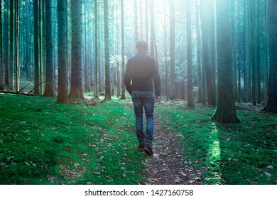 Mystic light in mossy forest with walking male person.
