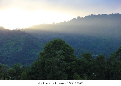 A mystic sunset over a mountain with trees, in New Zealand. The image is overexposed to emphasize the mysteriousness of the landscape.