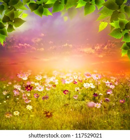 Mystical evening on the meadow. Abstract natural backgrounds for your design