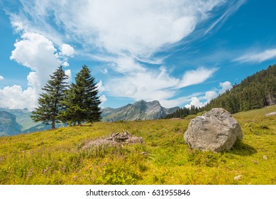 Mystical landscape with tree trunk against the sky on a sunny day in the Alps