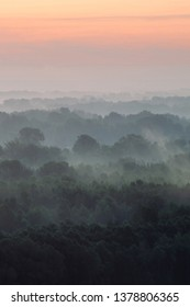 Mystical view from top on forest under haze at early morning. Eerie mist among layers from tree silhouettes in taiga under predawn sky. Morning atmospheric minimalistic landscape of majestic nature.