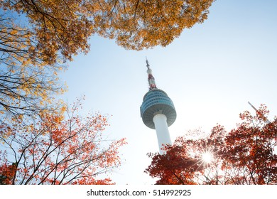 N Seoul Tower and autumn maple leaves at Namsan mountain in Seoul, South Korea. Taken on November 11, 2016.