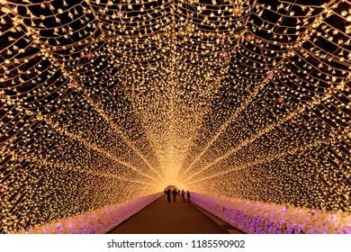 Nabana no Sato garden winter illumination at night, Nagoya, Japan