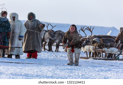 Nadym, Russia - February 23, 2019: Yamal, open area, tundra,The extreme north,  Races on reindeer sled in the Reindeer Herder's Day on Yamal, Sporting activity.reindeer herders throws lasso. editorial