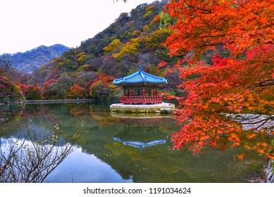 naejangsan mountain in autumn south korea