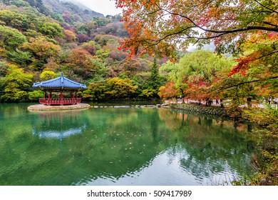 Naejangsan National Park in Autumn, South Korea