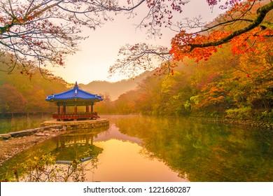 Naejangsan National Park of korea, Colorful autumn season located in the provinces of Jeollabuk-do and Jeollanam-do, South Korea.