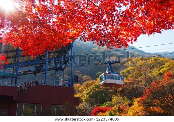 Naejangsansouth Korea November 2018 Cable Car Stock Photo Edit Now 1223574805