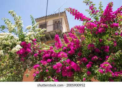 Nafplion, Greece. Types of the city.