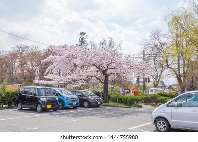 Nagano, Japan - April 19, 2019 : View of the car parking lot at Nagano City with cherry blossom, Nagano is the capital of Nagano Prefecture.