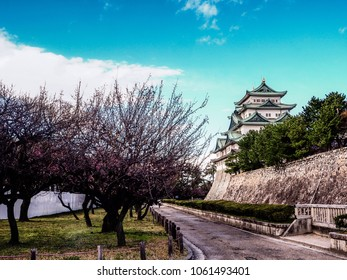 Nagoya castle is big castle in Japan