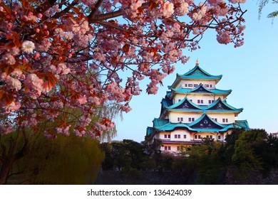 Nagoya Castle and cherry blossom season
