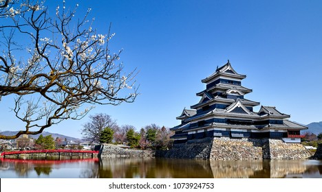 Nagoya Castle at Japan