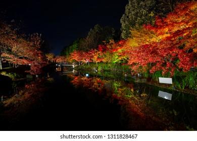 NAGOYA, JAPAN - DEC8 2018: Landscape of Japan parks Nabana no sato winter illumination at night, It is one of Japan's largest illumination parks.