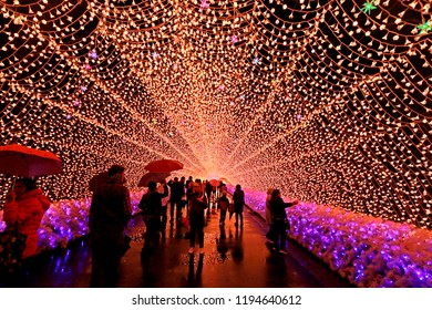 NAGOYA-JAPAN-NOVEMBER 27 : Decorative lighting in the park at nabana no sato lighting park, November 27, 2017, Nagoya Japan