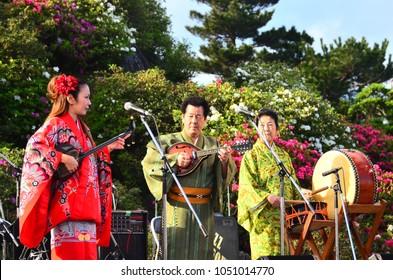 NAHA, OKINAWA, JAPAN - MARCH 9, 2017 - local musician wearing a traditional Okinawan costume and playing  sanshin in  the garden