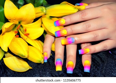 Nail art manicure.Female hands with colorful nail design holding beautiful yellow flower.Manicure - Beauty treatment
