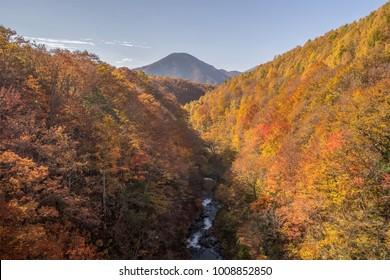 Nakatsugawa gorge at Fukushima in autumn