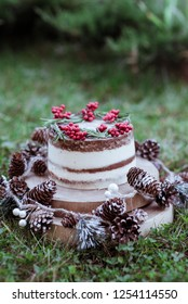 Naked Christmas cake. Rustic layer homemade cake with cream. Dessert decorated with chocolate and fruits. Selective focus. Piece of cake. Vegan raw cake.