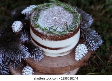 Naked Christmas cake. Rustic layer homemade cake with cream. Dessert decorated with chocolate and fruits. Selective focus. Piece of cake. Vegan raw cake. Deer.