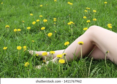 Naked female legs on a grass, barefoot girl sitting on a green meadow with blooming dandelions. Harmony with nature, concept of vacation, summer leisure, ecology, nudism, relax