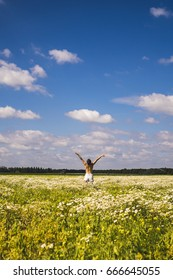 Naked girl in a chamomile field on a sunny day against a blue sky