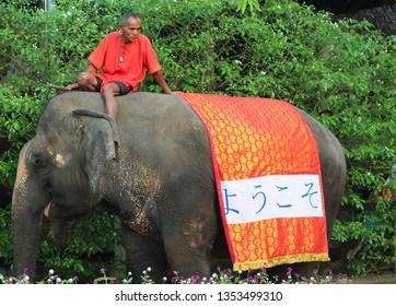 NAKHON PATHOM, THAILAND- December 3, 2013: An elephant and mahout display at the Sampran Riverside.