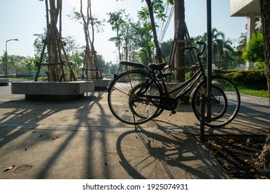 Nakhon Pathom, Thailand- February 26, 2021: Two bicycles are parked outdoor in the parking lot with soft sunlight in the afternoon