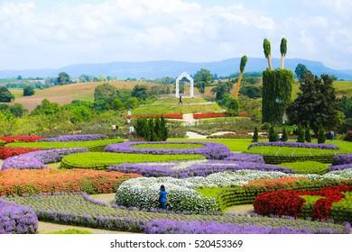 NAKHON RATCHASIMA - NOVEMBER 19 :Flora Park Wangnamkeaw on November 21, 2016 in Nakhon Ratchasima, Thailand