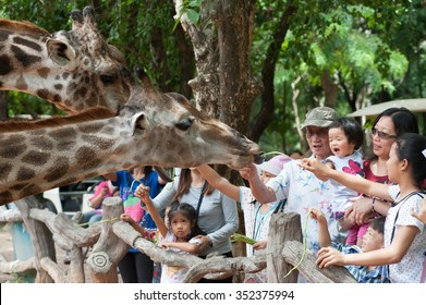 NAKHON RATCHASIMA, THAILAND - JULY 03 : Family travelers wide range of ages are feeding giraffe at the Korat Zoo on FEBUARY 03, 2011 at Nakhon Ratchasima, Thailand.