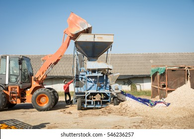 Nakhonratchasima ,Thailand, 29DEC2016 : People are working at Corn mill.Corn and Grain Handling or Harvesting Terminal. Corn Can be Used for Food, Feed or Ethanol