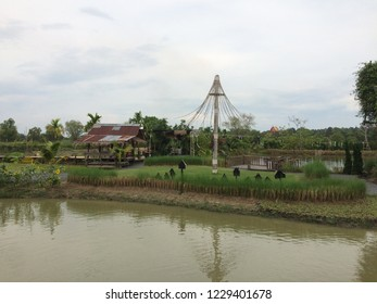 NAKORNNAYOK ,THAILAND - NOVEMBER 13,2018 : Montreux Cafe' And Farm is Cafe shop near natural,Ecotourism and Activities 1 Day trip of family,Rice Plant,Feeding the ducks and fishs.Landmark of Thailand.