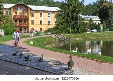 NALECZOW, POLAND. SEPTEMBER 2018: Monument to the Ducks is located in  Spa Park, near historic building of Sanatorium Prince Joseph