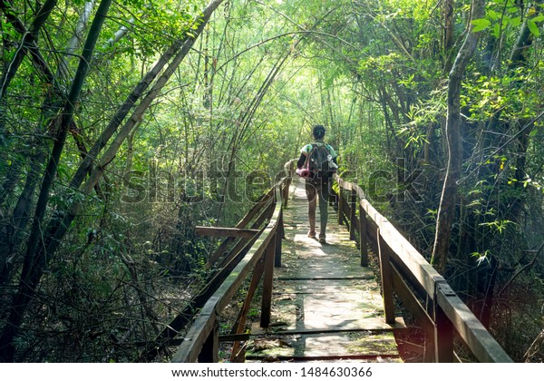 Nam Cat Tien National Park, Dong Nai Province, Vietnam, August 18, 2019: Panoramic image female visitors relaxing on wooden bridge at misty tropical rain forest in Nam Cat Tien nature reserve