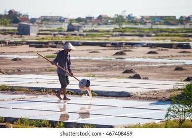 Nam Dinh, Vietnam, Aug 6: Farmers harvesting salt in salt fields on Aug 6, 2016 in Nam Dinh, Vietnam. Namdinh is province near by Hanoi- capital of Vietnam