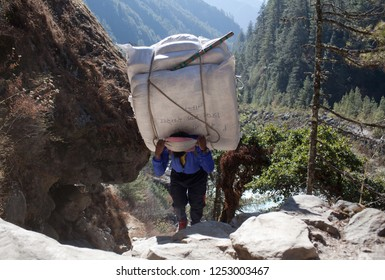 NAMCHE BAZAAR, NEPAL - JANUARY 17, 2017: Nepalese porter carrying a heavy load to the pass in Sagarmatha National Park, Himalayas