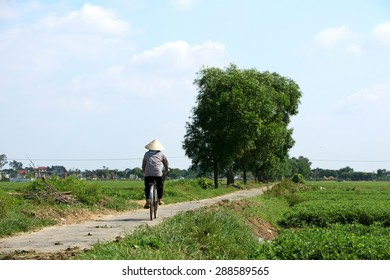 Namdinh, Vietnam - Jun 17, 2015: Farmer unidentified to return home after the working outside the peanut fields. Peanut is one of the important grain of Vietnam.