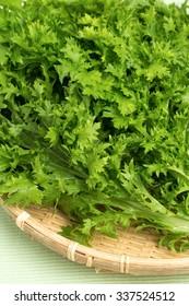 Named wasabi greens of vegetables