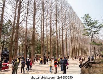 NAMI ISLAND - SOUTH KOREA - APRIL 15 : Tourists taking photos of the beautiful scenery around Nami Island in spring on  April 15, 2015, South Korea.