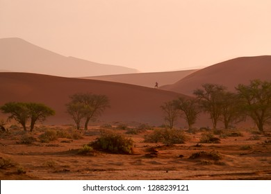 Namib desert scenery. A photographer on the ridge of red sand dunes, near famous Deadvlei. Typical desert environment,  photography in Namib Naukluft National Park, Namibia.