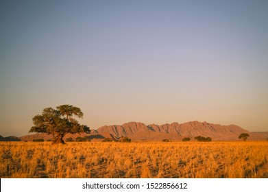 Namibia desert sunlight landscape on an Africa road trip