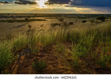 Namibia Kalahari sunset