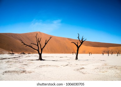 Namibia Sossusvlei and Dead Vlei with dead trees