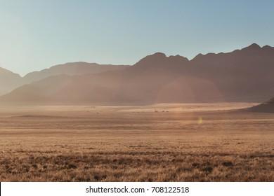 Namibian desert, Veld